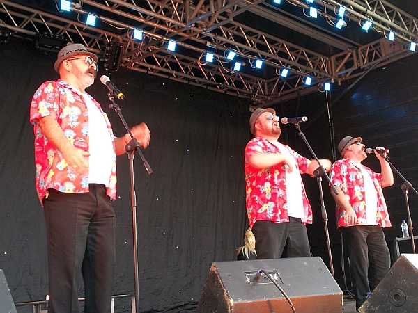 Wolf Vocal Group on stage