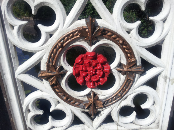 A red rose on Bow Bridge